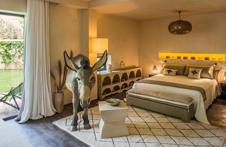 Donkey Suite